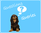 link to questions and queries - nearseas